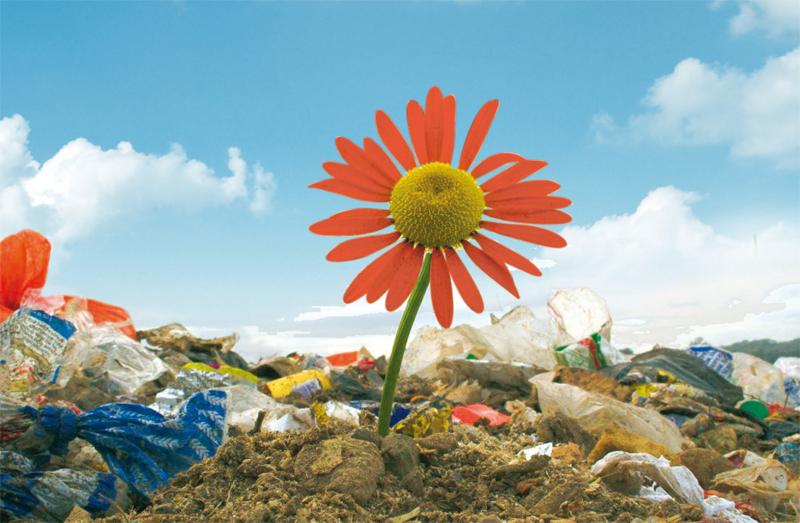 Illsutration déchets