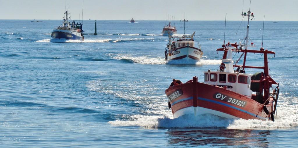 Retour de bateau. Port du Guilvinec. ©Le_Baillif
