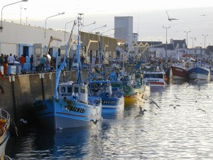 Port de Saint Guénolé - Penmarc'h