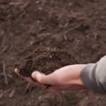 Lézinadou - compost