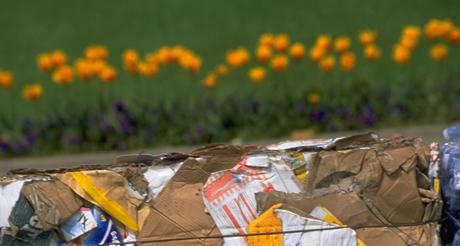Photo d'illustration pour la rubrique déchets