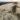 Dune de Treffiagat